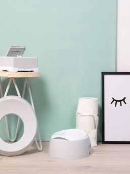 Beautifully lined and light-colored Luma potty home toilet space.