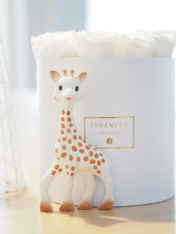 Vulli's Sophie the Giraffe has been amusing babies for 50 years. Made of 100% natural rubber and food paint, the BPA- and phthalate-free Sophie is soothing and safe for your teething baby. Sophie's unique design, pattern and texture stimulate all of your baby's senses during playtime. She makes a happy sound when squeezed, stimulating hearing and helping your baby understand the link between cause and effect.